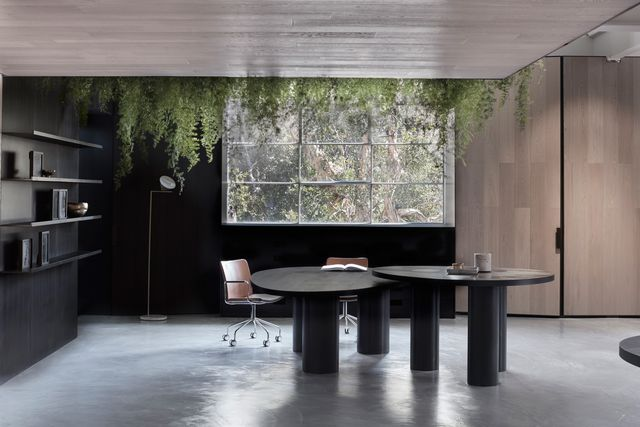 Seeking A Bold Statement Showroom To Herald Its Sydney Arrival Leading Timber Brand Woodcut Commissioned Award Winning Melbourne Firm Mim Design Apply