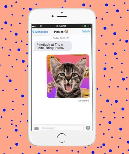 """7c2688f94b It makes sense that GIPHY Cam would snag the top spot on our list. GIPHY  has been working at being the best at bringing """"all the GIFs"""" to the  internet ..."""