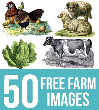 50 Free Farm Images for Farmhouse Style DIY Projects!   The