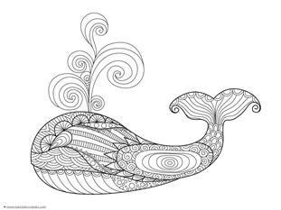 dolphins and whales coloring pages 1 1 1 1 bloglovin