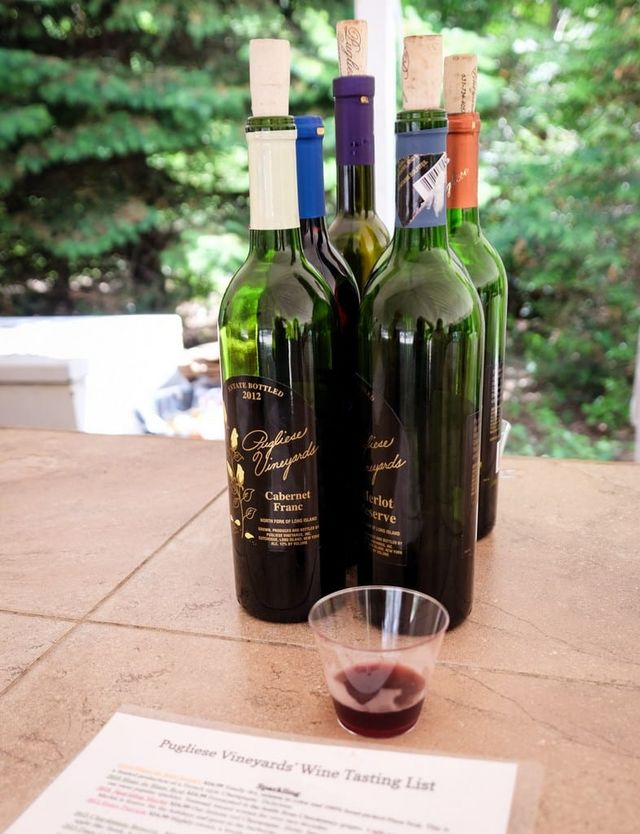 I ll be honest — Pugliese s wines weren t quite the caliber of the other  wines we tasted that day. That said 111b6b1cb