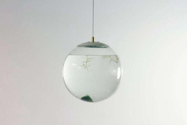 10 Easy Pieces: Glass Garden Accessories | Gardenista