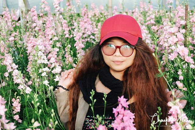 A First Timer S Guide To Atok Benguet Charlotte Anne Bloglovin
