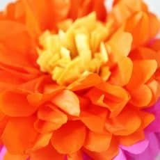 How to make tissue paper flowers skip to my lou bloglovin have you ever wondered how to make to make tissue paper flowers making flowers out of tissue paper is a fun and easy craft little kids can do much of the mightylinksfo