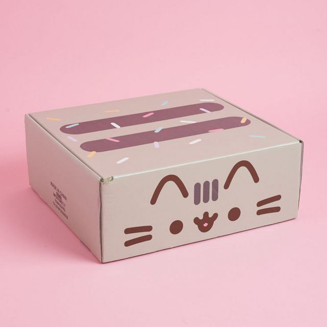 Pusheen Box Subscription Review Summer 2018 My Subscription