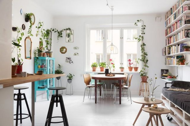 Of plants in decoration the trend is profound and should continue it is necessary to accumulate green plants to create a true small jungle at home