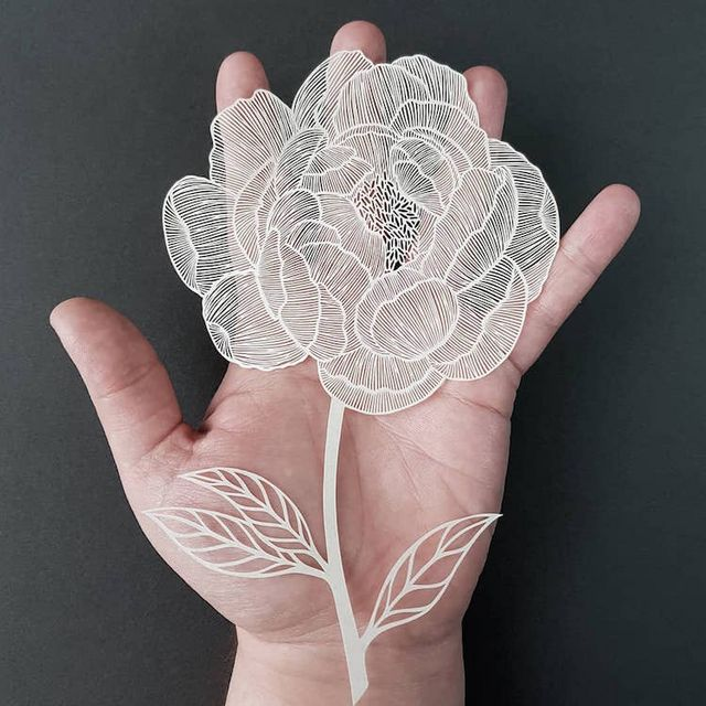 having practiced her craft for almost a decade, british paper cutting artist  pippa dyrlaga is truly a master  the talented artist creates intricate